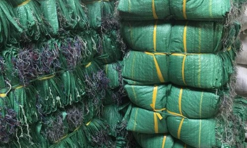 Bao pp dệt đựng lúa, gạo, hàng nông sản giá rẻ