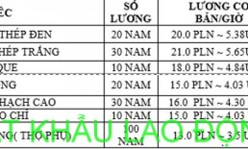 Đơn hàng cơ khí XKLD tại Đông Anh ,Hà Nội chi phí thấp lương cao
