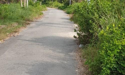 Đất mặt tiền đường Bàu Dừa, Hiệp Phước, Nhà Bè, giá: 2.2 tỷ TL