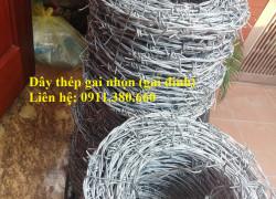 Nơi bán thép gai đinh, gai nhọn mạ kẽm làm hàng rào bảo vệ- Nhật Minh Hiếu