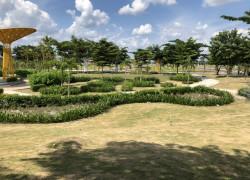 Mình nắm chủ do kẹt tiền  nên bán gấp lô đất 75m2, giá 580tr ngay Kcn Bàu Bàng gần quốc lộ 13.