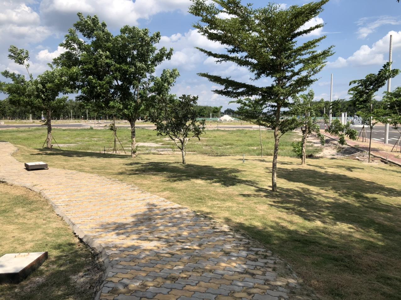 Do tình hình dịch bệnh nên tôi đành bán gấp lô đất 80m2, giá 690tr, ngay Kcn Bàu Bàng gần quốc lộ 13