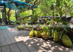 Lát sàn sân vườn đẹp bằng gỗ nhựa Việt Pháp