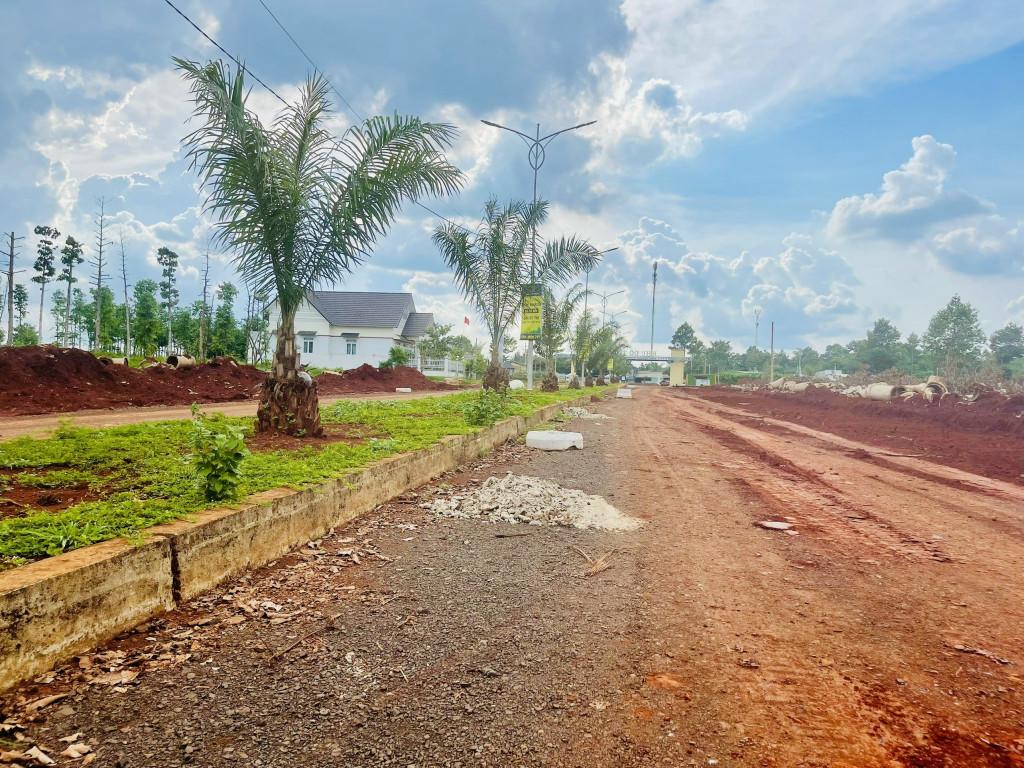 Cơ hội đầu tư mùa dịch chỉ với 400trieu tại Bình Phước
