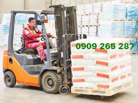 Cho thuê xe nâng An Phú Thuận An Bình Dương 0909 265 287