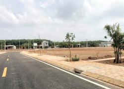 Bán 140m2 đất mặt tiền DH 515 - Phước Hòa - Phú Giáo