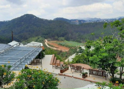 Bán đất view săn mây phường 11 Tp Đà Lạt