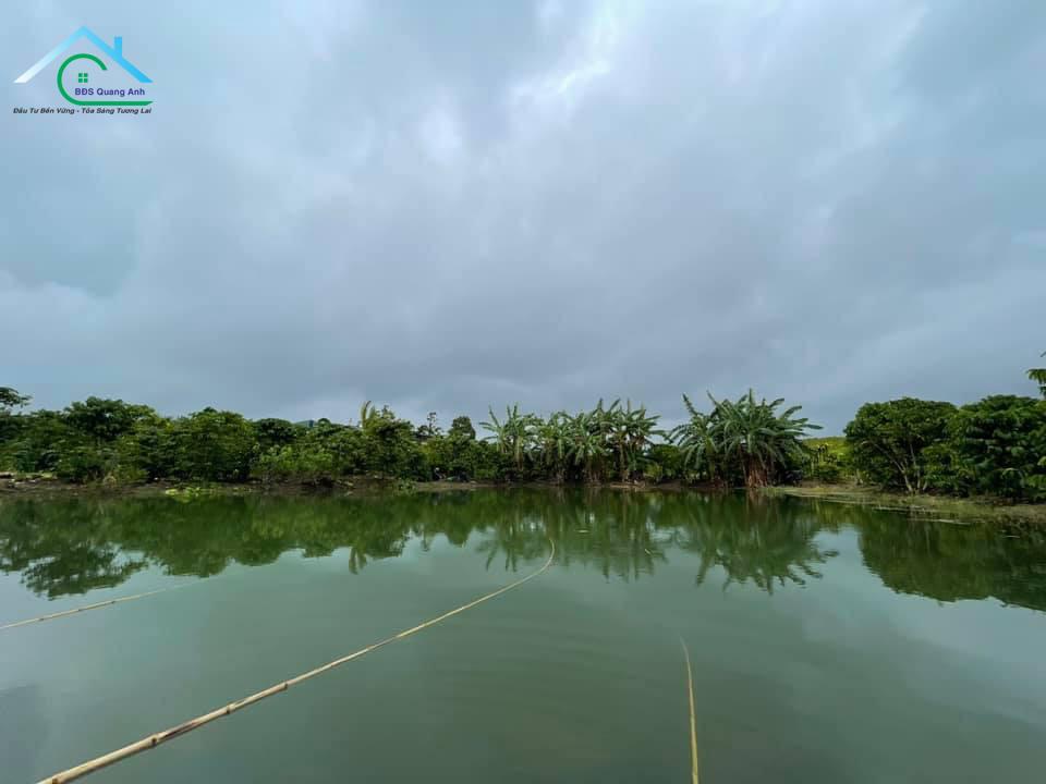 Bán thửa đất tại trung tâm TP. Bảo Lộc, phường Lộc Tiến 13.100m2 134 Phố Phùng Hưng
