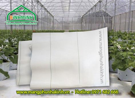 Bạt địa nông nghiệp, vật tư nhà kính nhà lưới, bạt trải nền nhà kính, bạt lót nền loại tốt , bạt phủ đất
