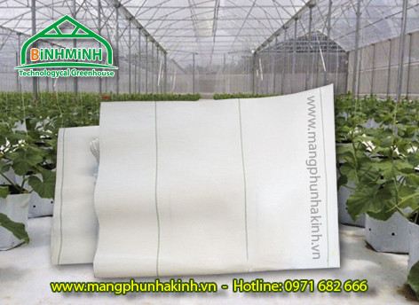 Cung cấp bạt trải nền loại tốt,bạt trải nền cao cấp,bạt lót nền nông nghiệp,bạt lót nền chống cỏ