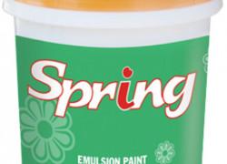 Đại Lý cấp 1 Sơn nội thất Spring For Int