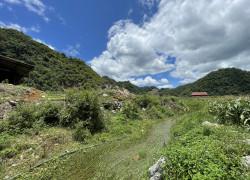Bán hơn 5000m2 đất trung tâm Mộc Châu - rất thích hợp để làm Homestay