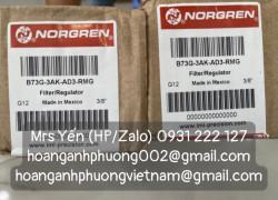 B73G-3AK-AD3-RMG | Bộ điều chỉnh áp Norgren | Hoàng Anh Phương