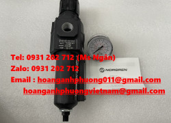 B73G-3AK-AD3-RMG Bộ lọc khí Norgren nhập khẩu giá tốt